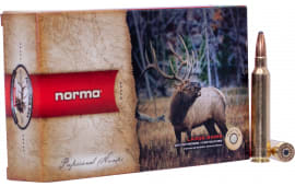 Norma 20174782 300 RUM 180 Oryx - 20rd Box