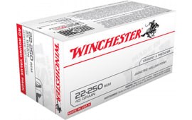 Winchester Ammo USA222502 Best Value 22-250 Remington 45 GR Jacketed Hollow Point - 40rd Box