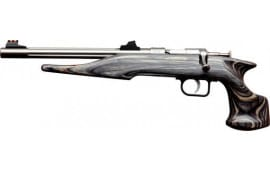 "Chipmunk 40103 Hunter Bolt Action Pistol .22 LR 10.5"" Barrel Single Shot Laminate / Stainless"