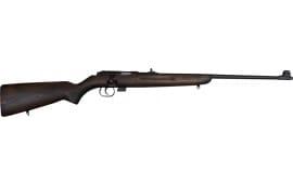 Romanian M1969 Military .22LR Training Rifle