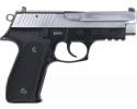 Zastava HEZ9CS EZ9 9MM Full Size Pistol, 4.25 BBL 15 Round Capacity, Blued Black Frame W / Polished Chrome Slide - W / 2-15 Round Mags